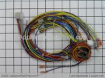 Wire Harness, Base