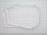 Gasket, Fzr