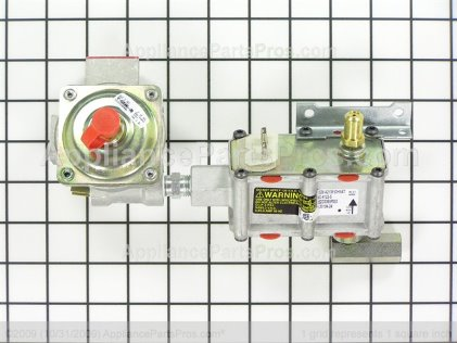 LG Gas Valve and Regulator Assembly EBZ37171801 from AppliancePartsPros.com