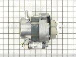 Circulation Motor